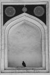 Pomba na tumba de Humayon